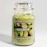 Bougie parfumée Grande jarre 2 mèches GINGER CITRUS Yankee Candle exclu US USA