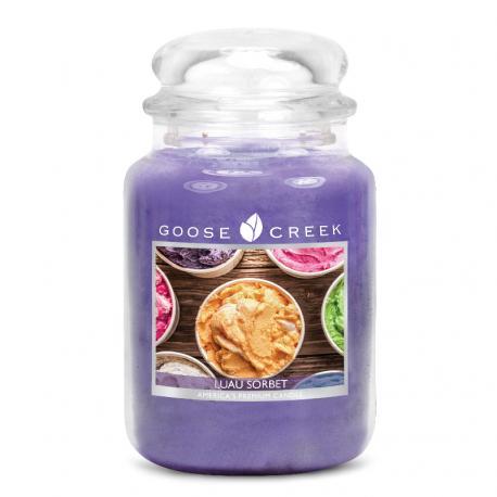 Bougie parfumée Grande Jarre 2 mèches LUAU SORBET Goose Creek Candle US USA
