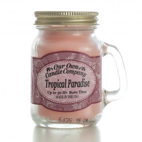 Mini Mason Jar TROPICAL PARADISE Our Own Candle Company