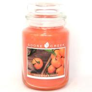 Grande Jarre 2 mèches CLEMENTINE AND MANGO Goose Creek Candle