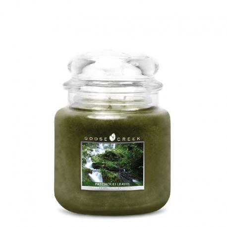 Bougie parfumée Moyenne Jarre 2 mèches PATCHOULI LEAVES Goose Creek Candle US USA