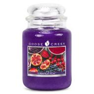 Grande Jarre 2 mèches SUPERFRUIT ACAI Goose Creek Candle