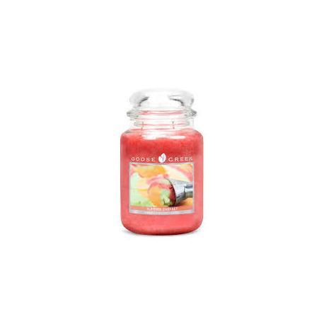 Bougie parfumée Grande Jarre 2 mèches SUMMER SHERBET Goose Creek Candle US