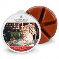 Cire parfumée CARNIVAL PRALINES Goose Creek Candle
