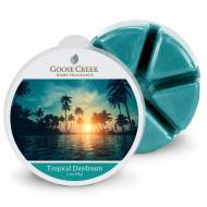 Cire parfumée TROPICAL DAYDREAM Goose Creek Candle