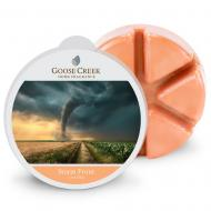 Cire parfumée STORM FRONT Goose Creek Candle