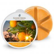 Cire parfumée ORANGE GROVE Goose Creek Candle US USA