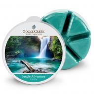 Cire parfumée JUNGLE ADVENTURE Goose Creek Candle