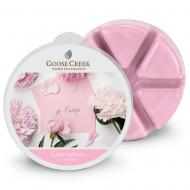 Cire parfumée LOVE LETTERS Goose Creek Candle