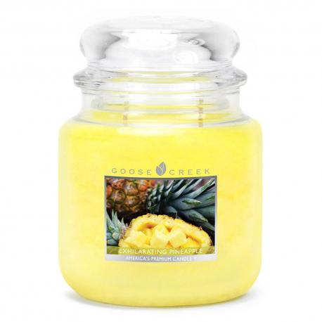 Moyenne Jarre 2 mèches EXHILARATING PINEAPPLE Goose Creek Candle Difmu
