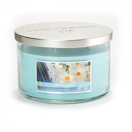 Bougie 3 mèches COASTAL BLOSSOM Colonial Candle