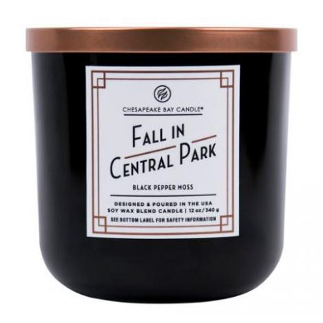 Bougie 2 mèches FALL IN CENTRAL PARK Chesapeake Bay Candle US