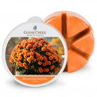 Cire parfumée BLOOMING HARVEST Goose Creek Candle
