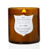 Bougie mèches en bois MI TEA TREE Colonial Candle